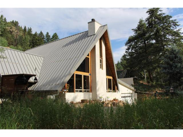 615 Fall River Road, Idaho Springs, CO 80452 (MLS #7293018) :: 8z Real Estate