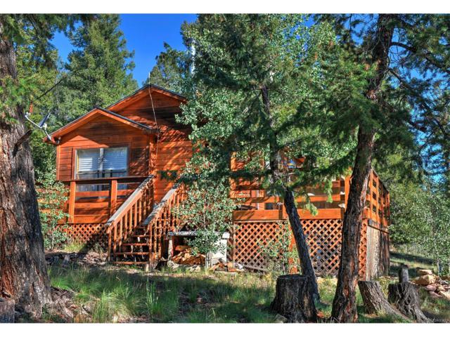 2424 Redhill Road, Fairplay, CO 80440 (MLS #7297494) :: 8z Real Estate