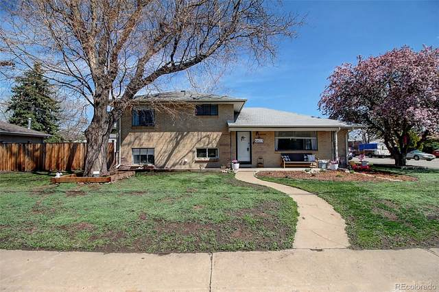 6613 W 53rd Avenue, Arvada, CO 80002 (#7298651) :: The Dixon Group