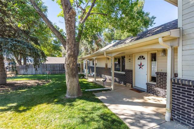 2616 E Vine Drive, Fort Collins, CO 80524 (#7299822) :: The DeGrood Team