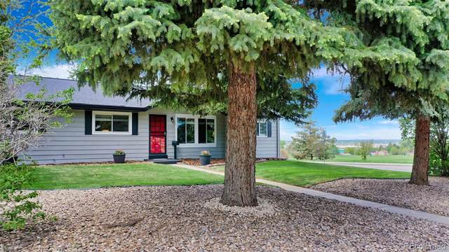 5303 S Datura Street, Littleton, CO 80120 (#7304106) :: The Heyl Group at Keller Williams