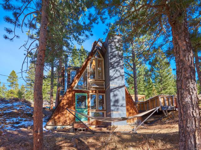 71 Stinky Gulch Road, Nederland, CO 80466 (#7305354) :: The Pete Cook Home Group