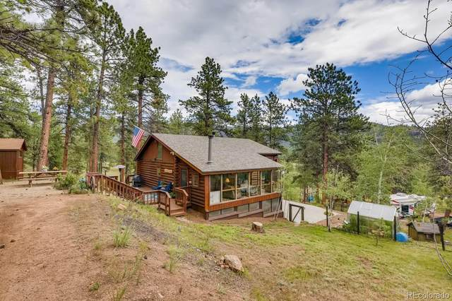 33851 Marie Road, Pine, CO 80470 (#7309710) :: The DeGrood Team