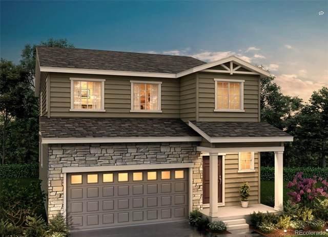5495 Blue Lunar Lane, Castle Rock, CO 80104 (MLS #7314613) :: 8z Real Estate