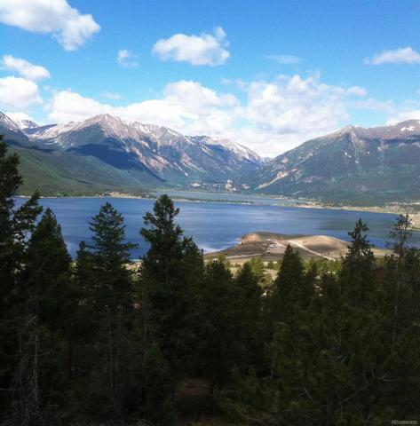 Tbd Reva Ridge Road, Twin Lakes, CO 81251 (#7314828) :: Wisdom Real Estate