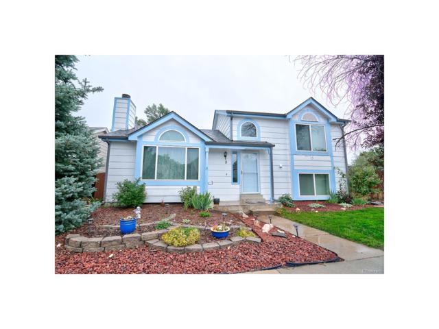 8 Quicksilver Avenue, Castle Rock, CO 80104 (MLS #7315947) :: 8z Real Estate