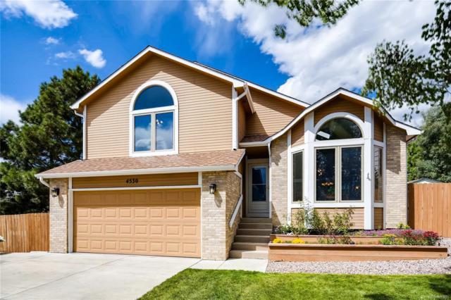 4530 Squirreltail Drive, Colorado Springs, CO 80920 (#7316271) :: The Peak Properties Group