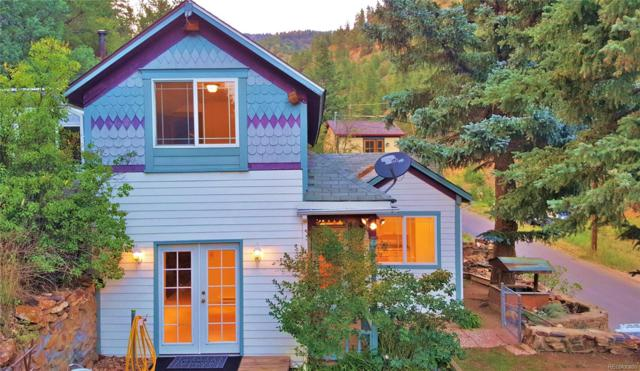 399 Virginia Canyon Road, Idaho Springs, CO 80452 (#7319114) :: Wisdom Real Estate