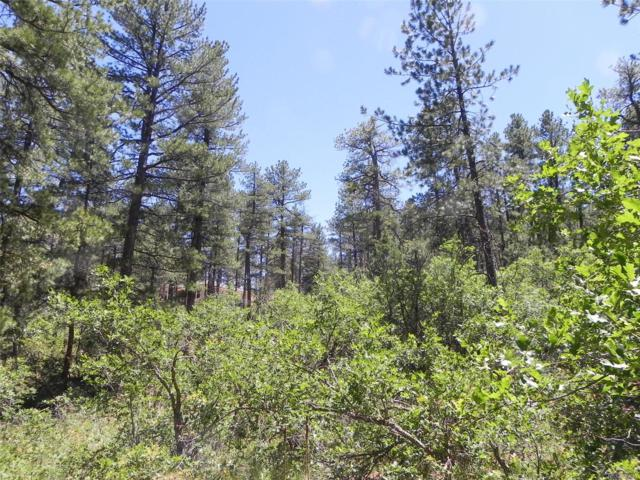 8058 Inca Road, Larkspur, CO 80118 (#7320136) :: House Hunters Colorado