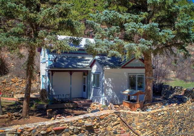 399 Virginia Canyon Road, Idaho Springs, CO 80452 (#7323017) :: Hudson Stonegate Team