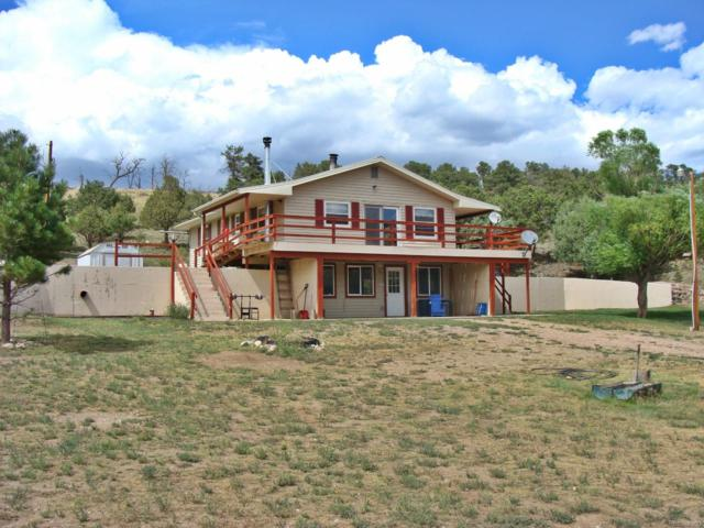 2249 County Road 27A, Cotopaxi, CO 81223 (MLS #7323749) :: 8z Real Estate