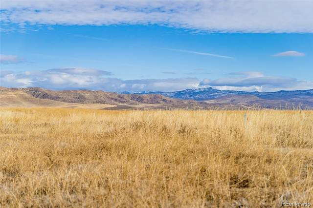38605 Hidden Springs Drive, Hayden, CO 81639 (#7323990) :: HomeSmart Realty Group