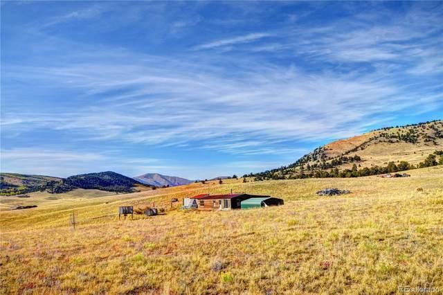 151 Elkhorn View Drive, Como, CO 80432 (#7326755) :: Venterra Real Estate LLC