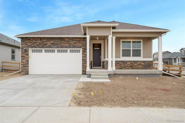 920 Rollins Den Drive, Fort Collins, CO 80524 (#7331103) :: The DeGrood Team
