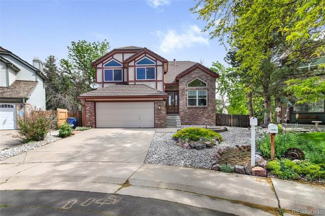 8284 S Reed Street, Littleton, CO 80128 (#7333048) :: Bring Home Denver with Keller Williams Downtown Realty LLC