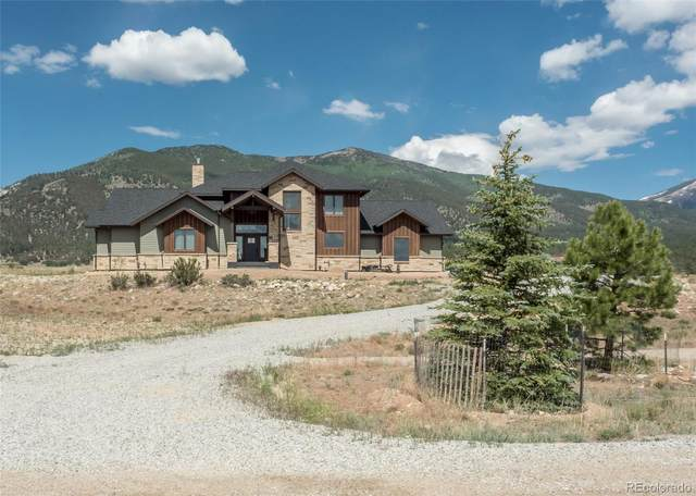 17402 Reserve Drive, Buena Vista, CO 81211 (#7333439) :: The DeGrood Team