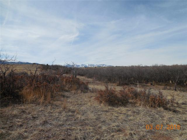 230 Running Bear, Cotopaxi, CO 81223 (MLS #7335376) :: Kittle Real Estate