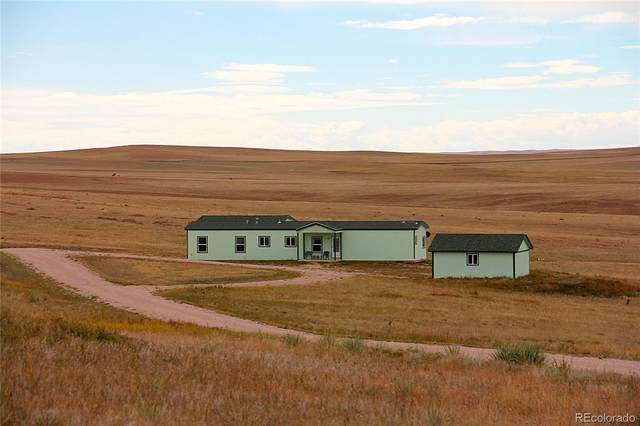 29555 County Road 99, Ramah, CO 80832 (#7342330) :: Berkshire Hathaway Elevated Living Real Estate
