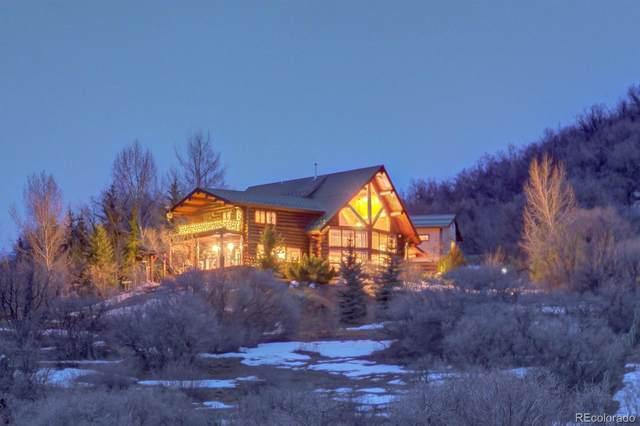 42237 Deer Road, Steamboat Springs, CO 80487 (MLS #7342354) :: 8z Real Estate