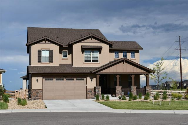 8874 Flattop Way, Arvada, CO 80007 (#7343039) :: The Heyl Group at Keller Williams