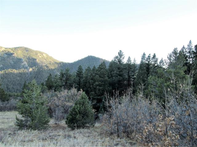 422 Highlands Road, Canon City, CO 81233 (MLS #7343921) :: 8z Real Estate
