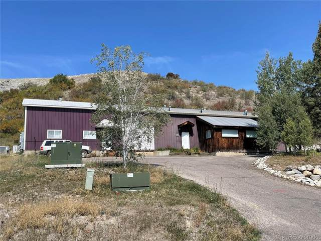 2760 Acre Lane, Steamboat Springs, CO 80487 (#7346732) :: Signature Realty, Inc.