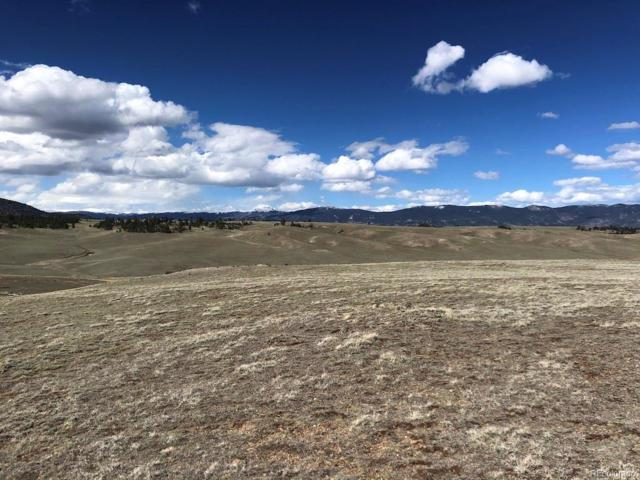 302 Ramrod Path, Como, CO 80432 (MLS #7346781) :: 8z Real Estate