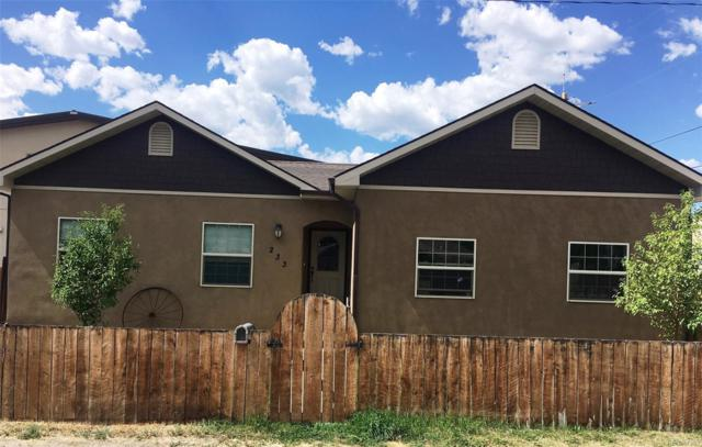 233 E Thirteenth Street, Salida, CO 81201 (#7347927) :: 5281 Exclusive Homes Realty