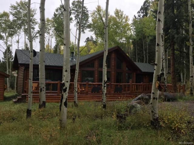 171 Bear Run Street, Antonito, CO 81120 (#7348831) :: The Pete Cook Home Group