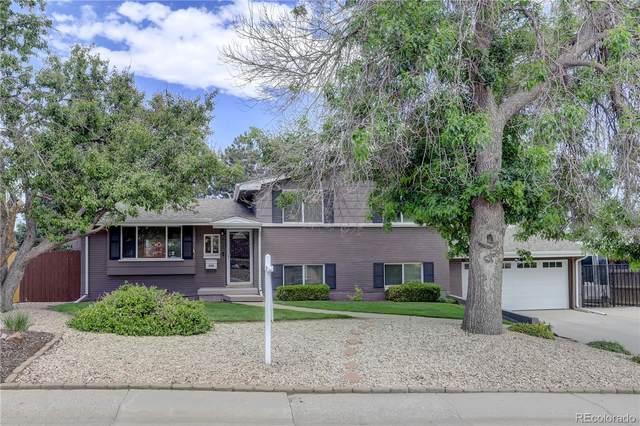 558 S Alkire Street, Lakewood, CO 80228 (MLS #7350722) :: 8z Real Estate