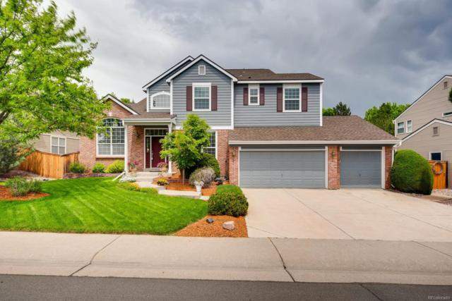 1977 Mountain Maple Avenue, Highlands Ranch, CO 80129 (#7352354) :: The Heyl Group at Keller Williams
