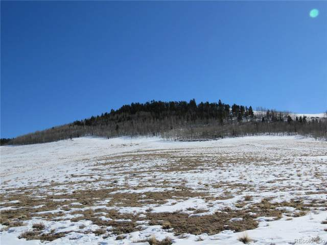 Coochee Trail, Hartsel, CO 80449 (#7352833) :: James Crocker Team