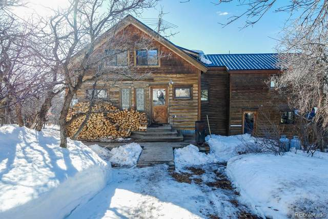 40205 Valley Drive, Steamboat Springs, CO 80487 (#7352954) :: HomeSmart