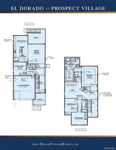 9739 Mount Kataka Point, Littleton, CO 80125 (#7355045) :: Mile High Luxury Real Estate