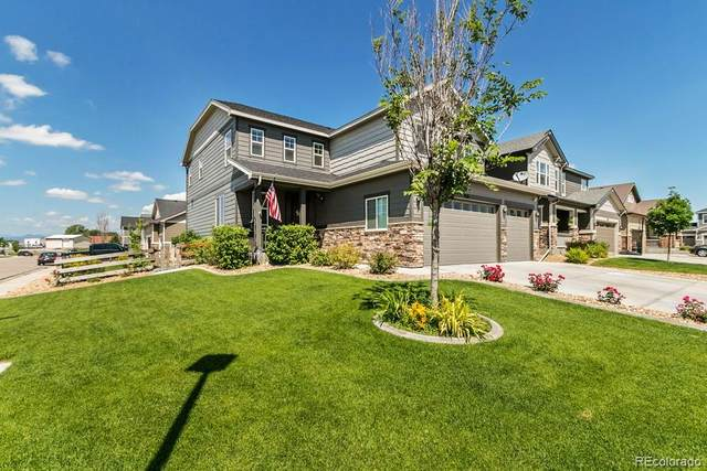 288 Mcneil Drive, Windsor, CO 80550 (MLS #7359092) :: 8z Real Estate