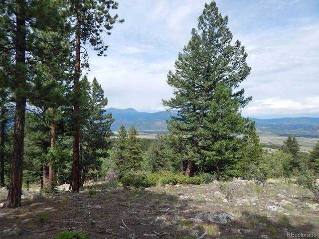 30175 Mountaintop Drive, Buena Vista, CO 81211 (#7360837) :: Sultan Newman Group