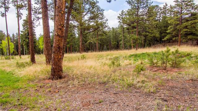 1215 Cottontail Trail, Woodland Park, CO 80863 (MLS #7361414) :: 8z Real Estate