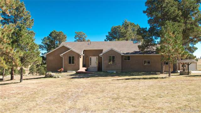17375 Forest Green Way, Elbert, CO 80106 (#7365078) :: The DeGrood Team
