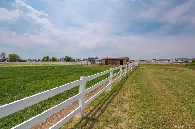 10920 E 159th Place, Brighton, CO 80602 (MLS #7365197) :: Bliss Realty Group