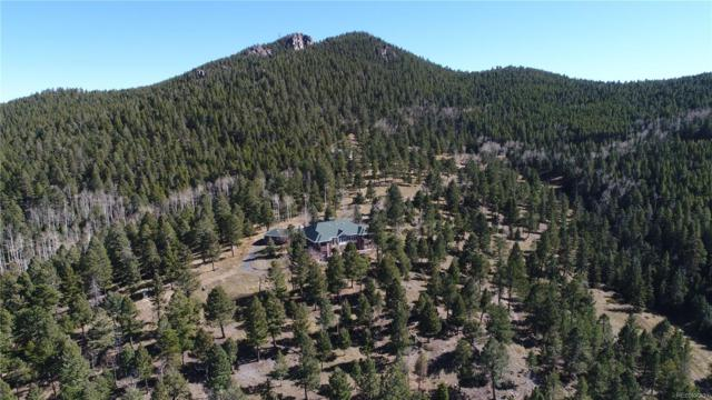 26271 Richmond Hill Road, Conifer, CO 80433 (#7371502) :: Structure CO Group