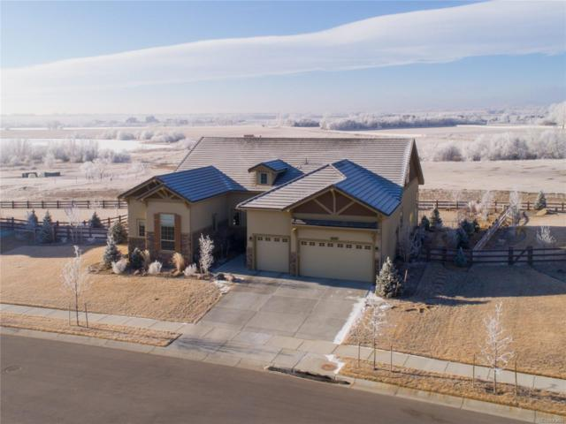 6333 Fall Harvest Way, Fort Collins, CO 80528 (#7379575) :: Compass Colorado Realty