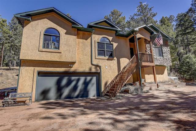 13120 Spruce Creek Circle, Larkspur, CO 80118 (#7379886) :: Wisdom Real Estate