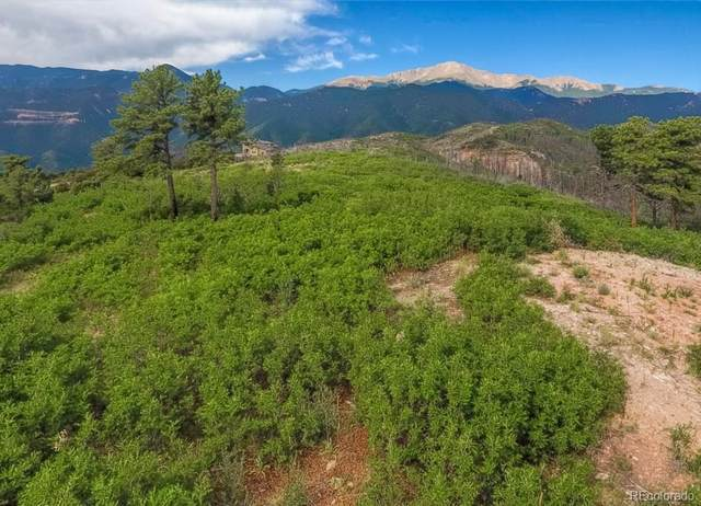 3770 Outback Vista Point, Colorado Springs, CO 80904 (#7380251) :: The DeGrood Team