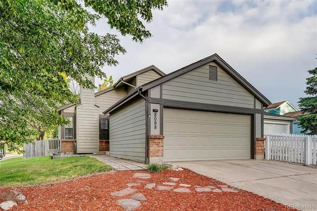 8098 Miller Circle, Arvada, CO 80005 (#7382270) :: The DeGrood Team