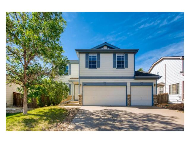 5625 Cheetah Chase, Littleton, CO 80124 (#7387683) :: RE/MAX Professionals