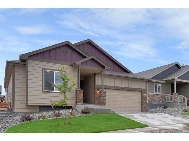 844 Deschutes Drive, Colorado Springs, CO 80921 (MLS #7388334) :: 8z Real Estate