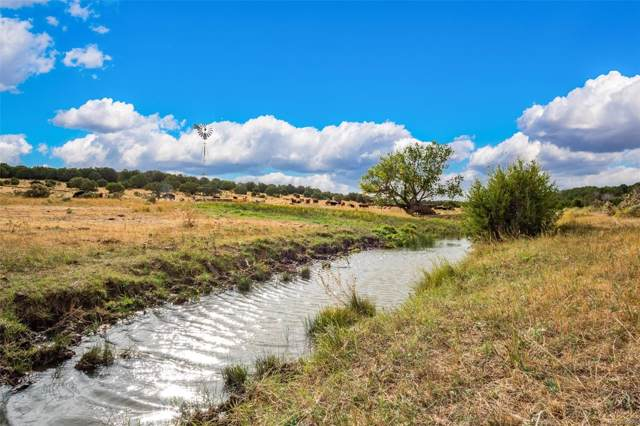 County Road 225, Kim, CO 81049 (#7389002) :: The DeGrood Team