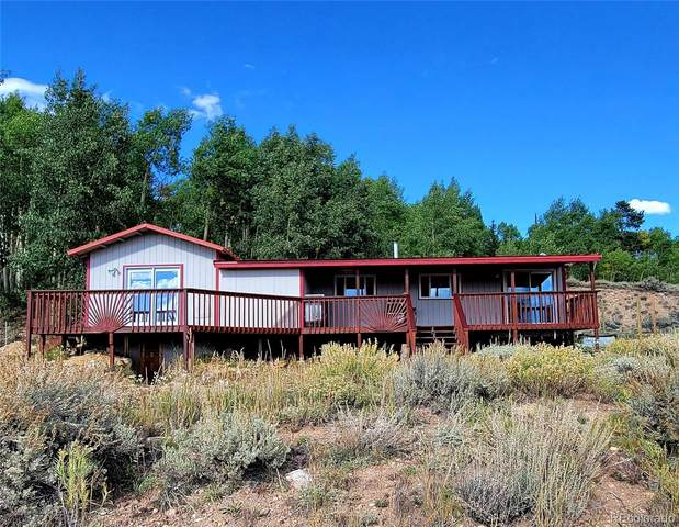 68 Cottontail Road, Leadville, CO 80461 (#7389142) :: You 1st Realty