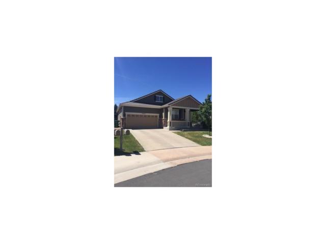 3402 Prairie Vista Drive, Castle Rock, CO 80109 (#7390055) :: RE/MAX Professionals