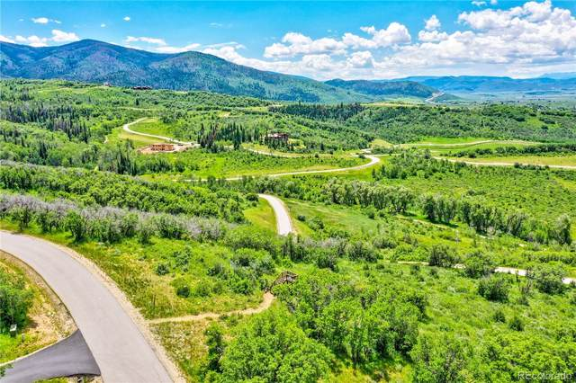 33840 Meadow Creek Drive, Steamboat Springs, CO 80487 (#7392242) :: HomeSmart